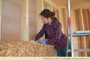 21.05.2016 Catherine pose une botte de paille lors du deuxième chantier participatif. A la main, de la paille est serrée autour de la botte afin de tenir celle-ci dans l'ossature en bois.
